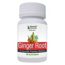 Ginger Root Capsules 60's