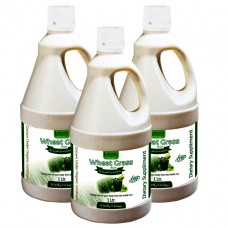 Wheat Grass Juice (with Aloevera & Amla) Sugar Free 1 Ltr. (Pack of Three)