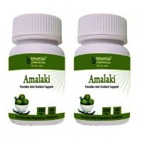 Amalaki Capsules 60's - Anti Oxidant (Pack of Two)