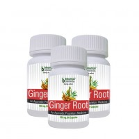 Ginger Root Capsules 60's (Pack of Three)
