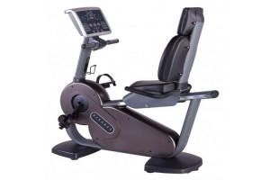 Energie Fitness Imported Recumbent Bike FT-6806R