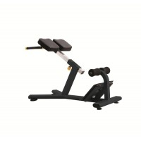 Energie fitness imported Roman chair J-026
