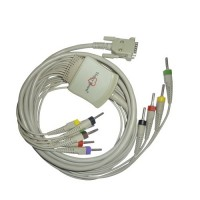 10 Lead ECG Cable Compatible with RMS 4mm 15pin Banana Type